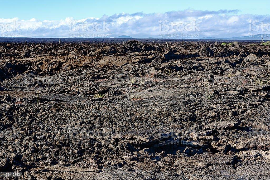 Ropey Pahoehoe lava field at Punta Moreno, Galapagos Islands stock photo
