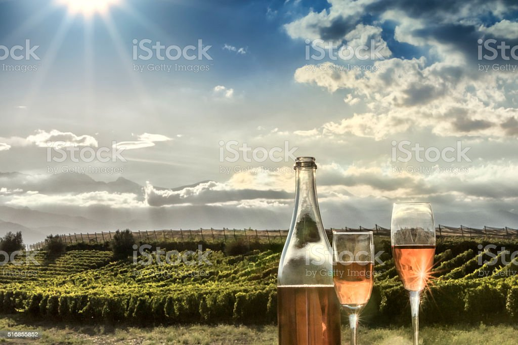 Rosé champagne and vineyard stock photo