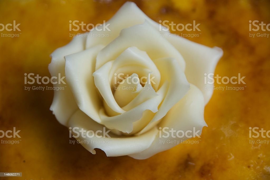 rosa bianca di glassa royalty-free stock photo