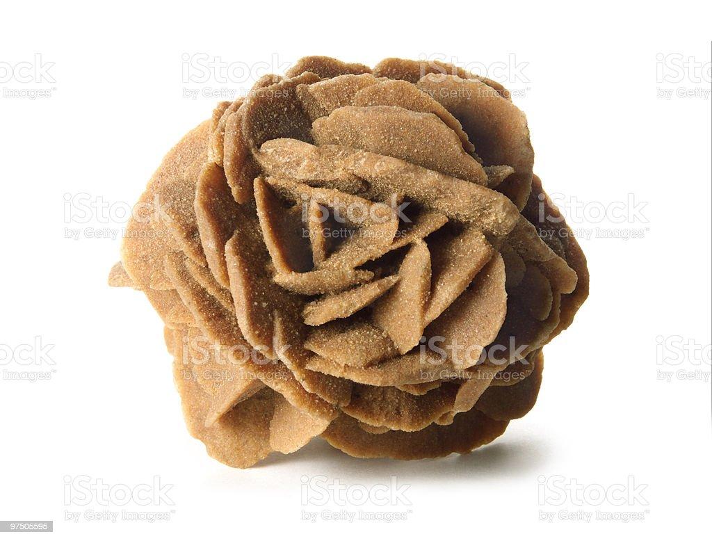 Rosa del desierto stock photo