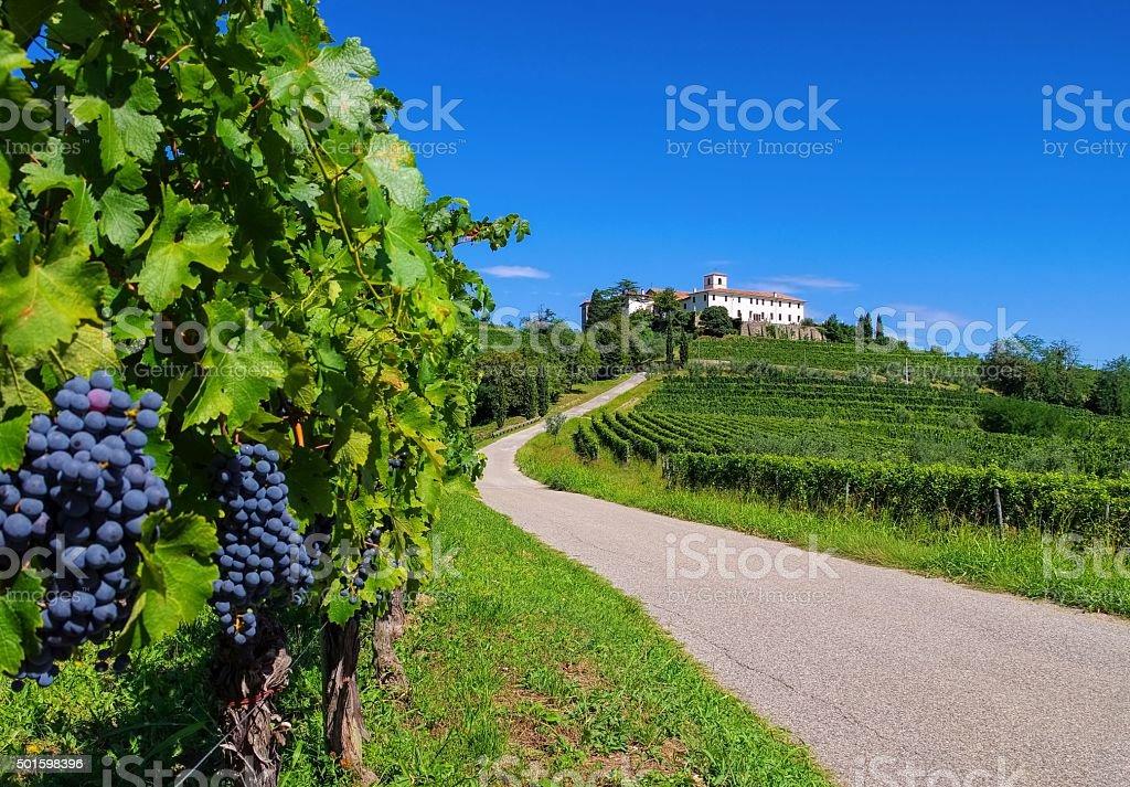 Rosazzo Abbey stock photo