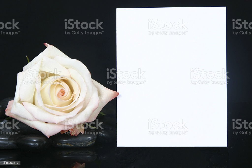 Rose and Card Series royalty-free stock photo