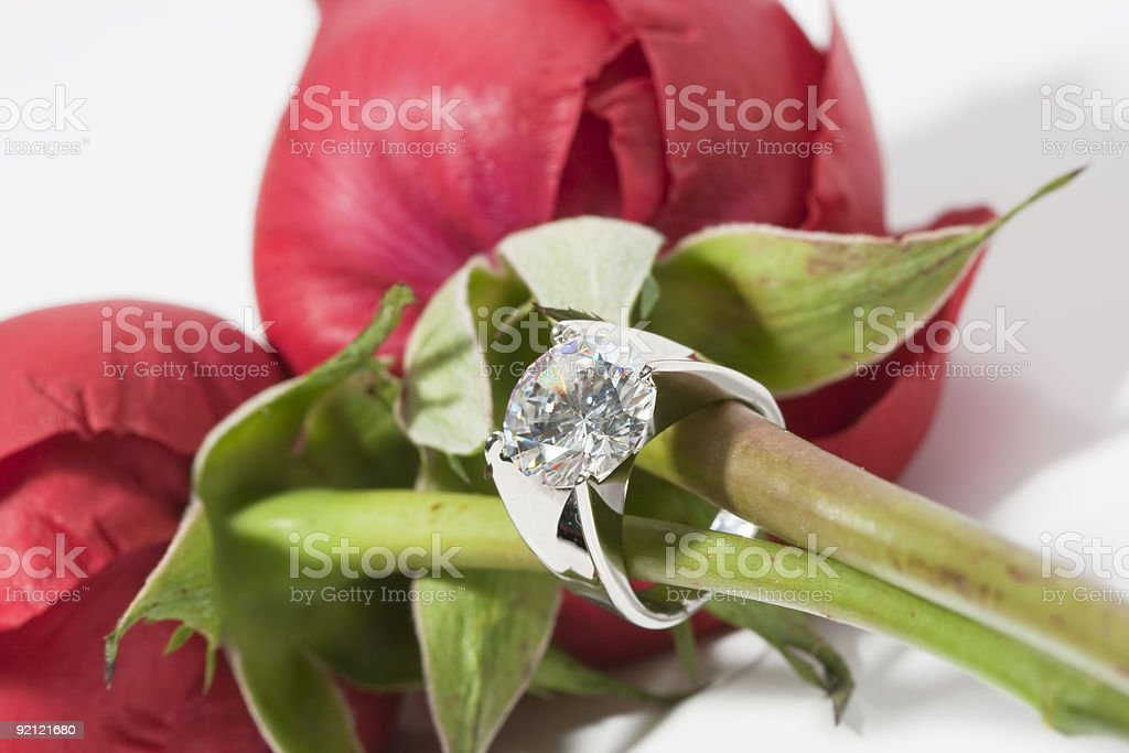 Rose and diamond ring royalty-free stock photo