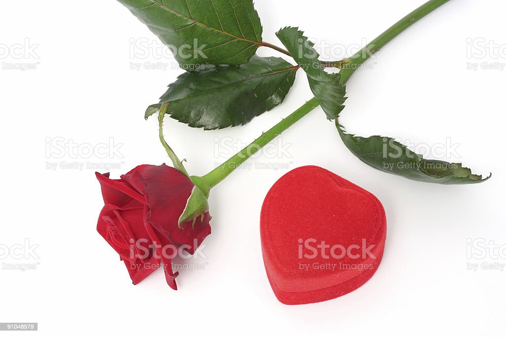 Rose and gift royalty-free stock photo