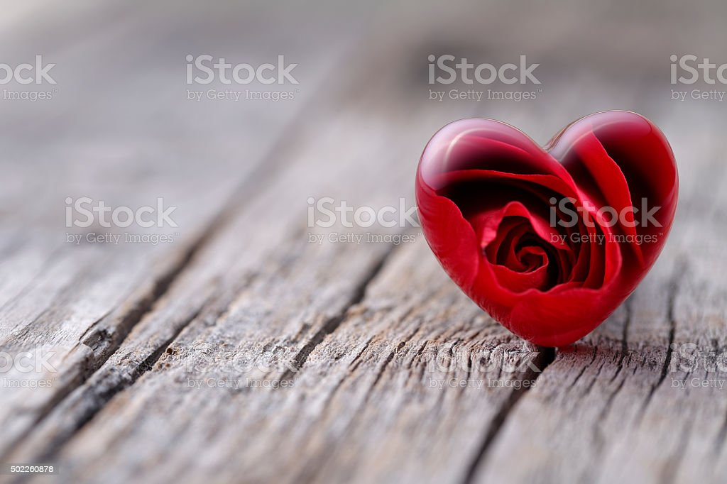 Rose and heart stock photo