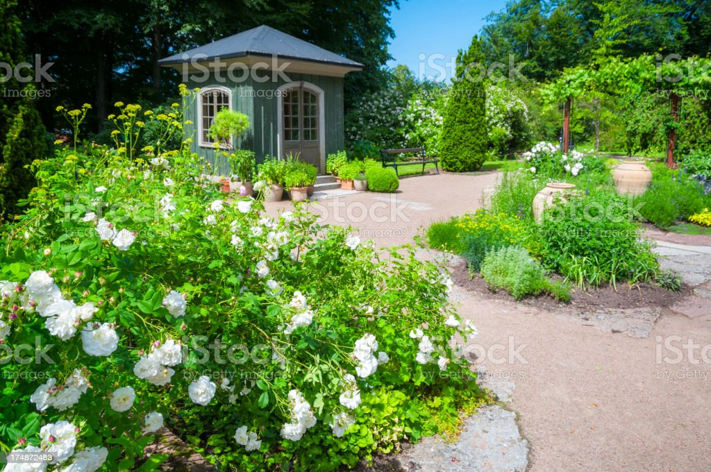Rose and Herbal garden royalty-free stock photo
