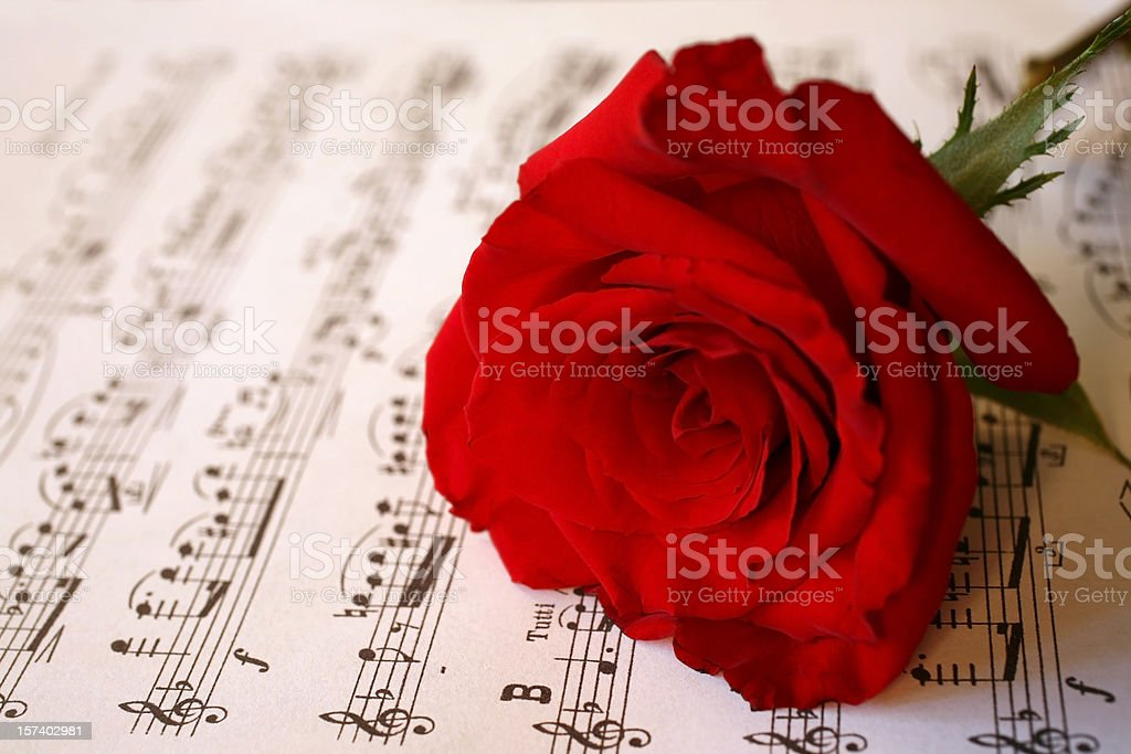 Rose and Music royalty-free stock photo