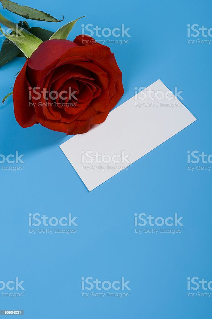 Rose and note royalty-free stock photo