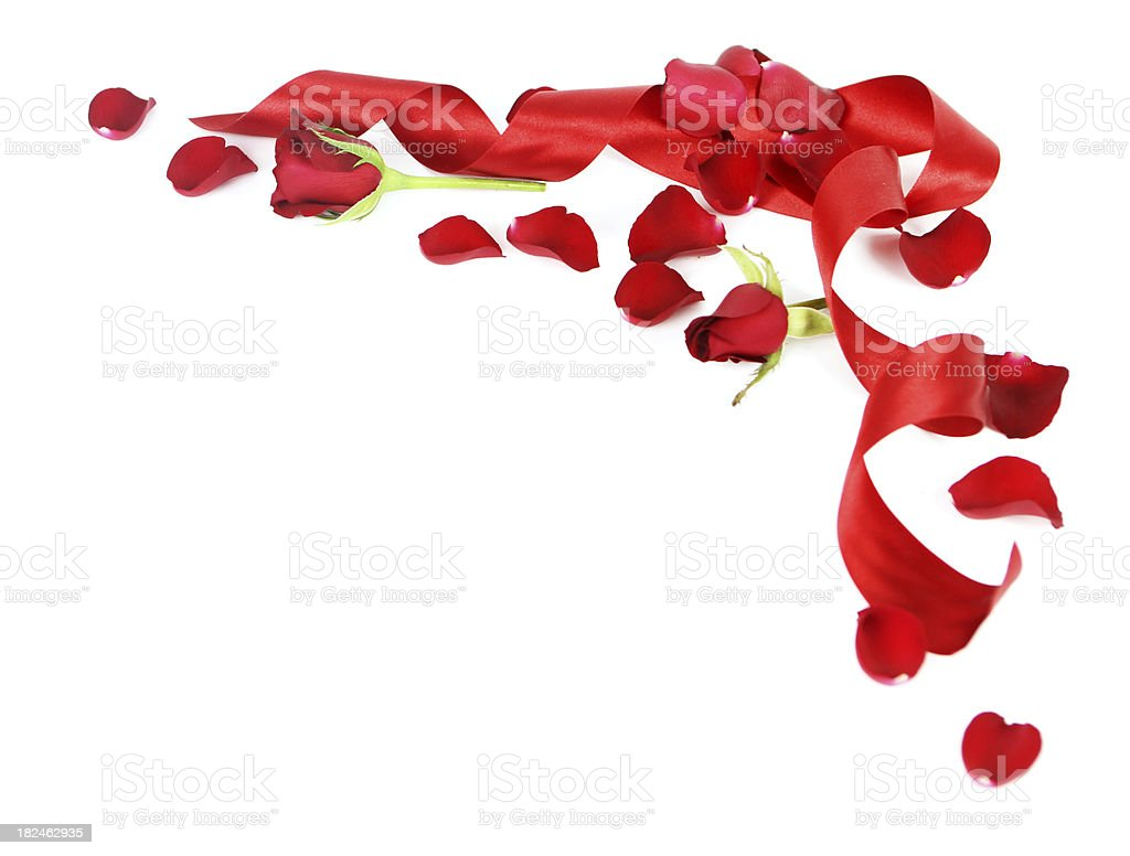 Rose and Ribbon Corner stock photo