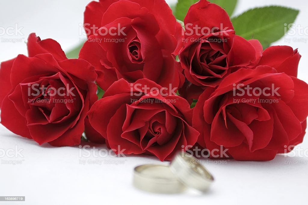 rose and rings royalty-free stock photo
