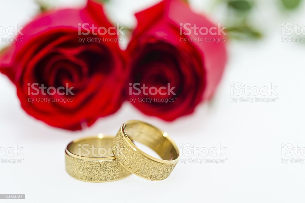 rose and wedding rings royalty-free stock photo