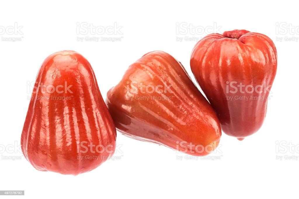 Rose apple fruit isolated on white background stock photo