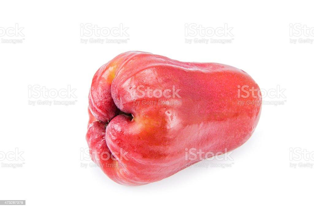 Rose apples isolated on white background stock photo