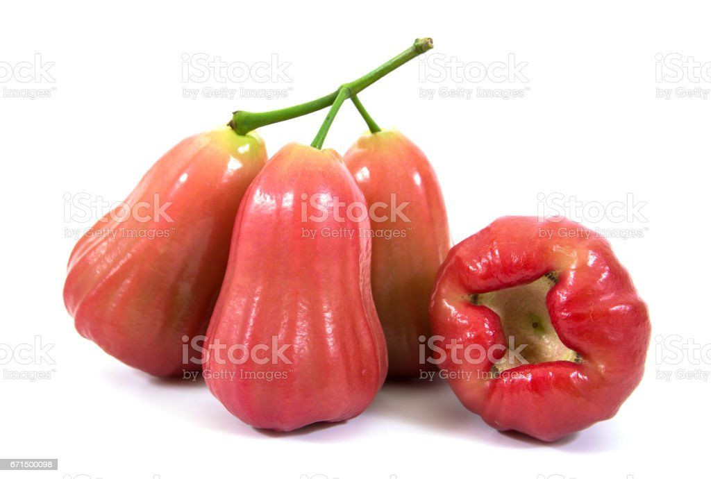 Rose apples or chomphu isolated on white background.Rose apples isolated stock photo