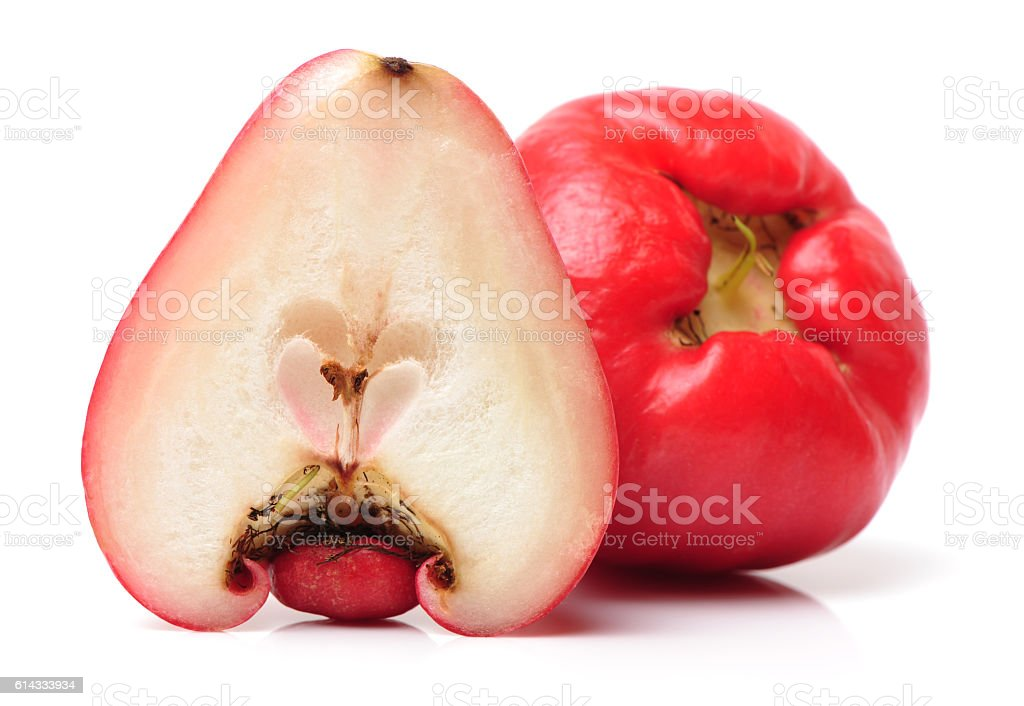 Rose apples or chomphu stock photo