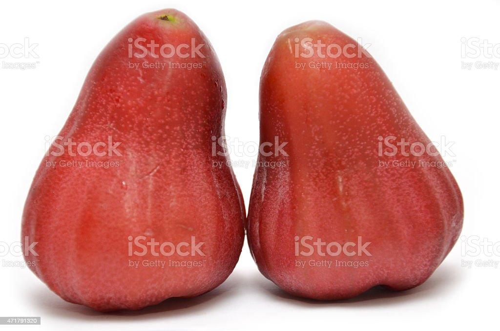 Rose apples stock photo