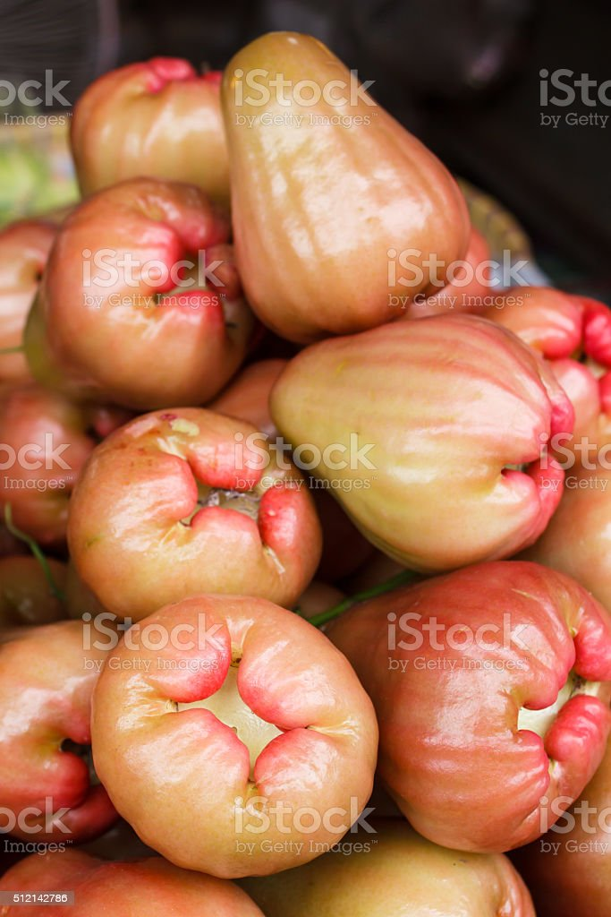 Rose apples. stock photo