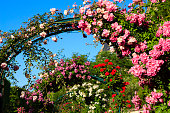 Rose archway in the Parisian garden