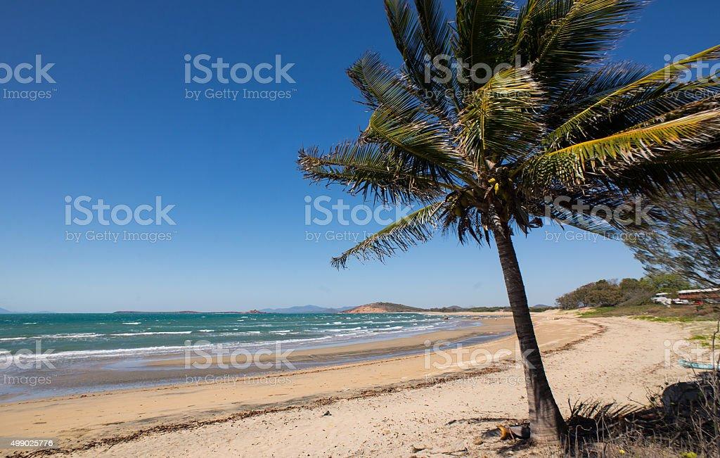 Rose bay - Bowen stock photo