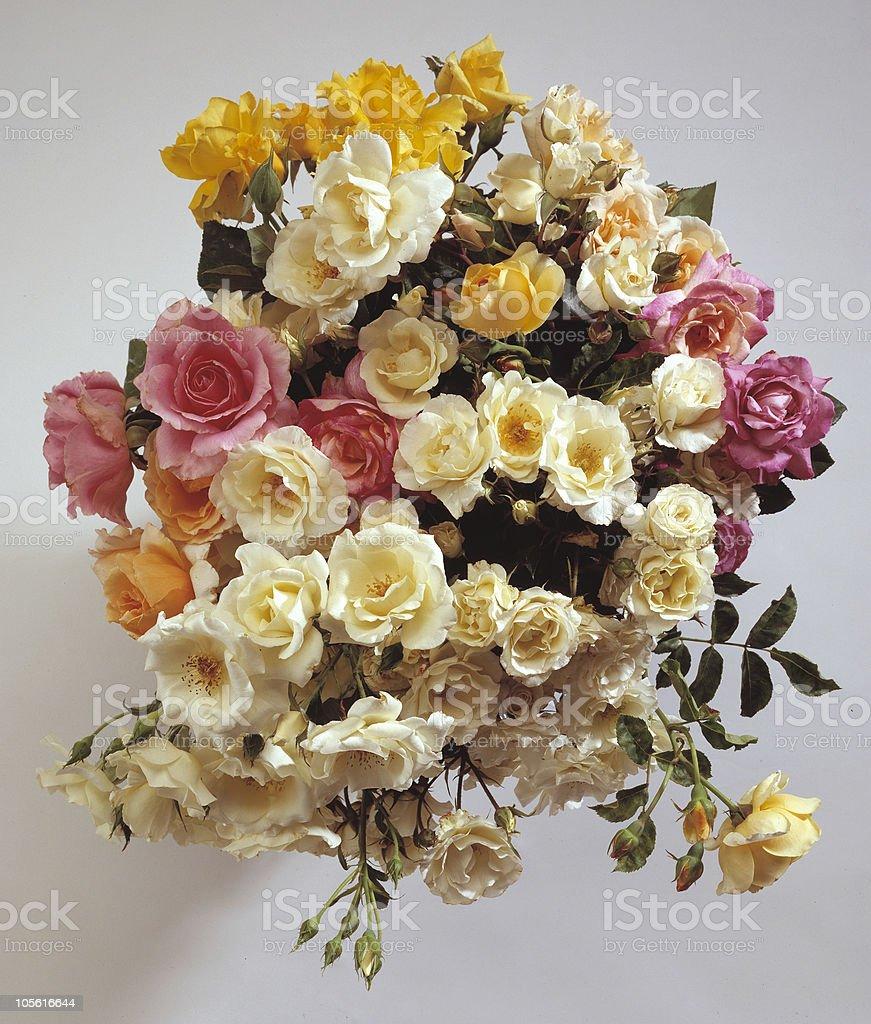 bouquet de rosas foto de stock libre de derechos