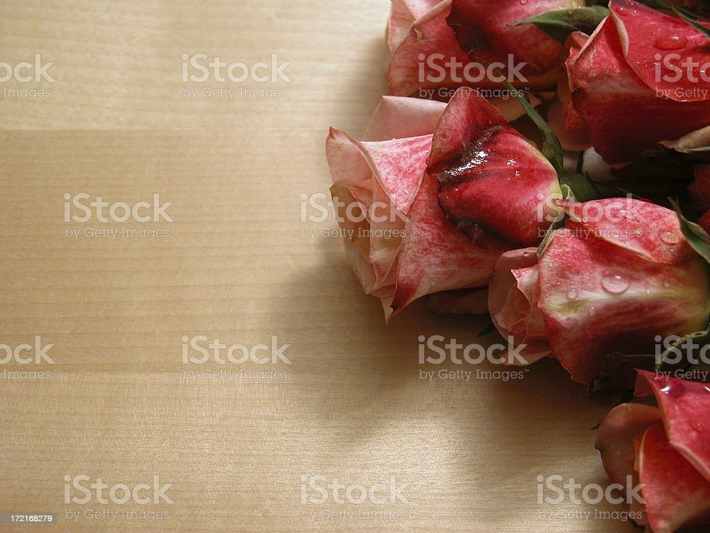 rose bunch stock photo
