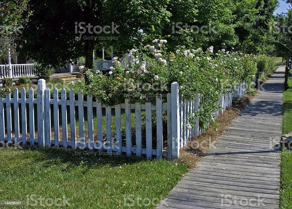 Rose Covered White Picket Fence royalty-free stock photo