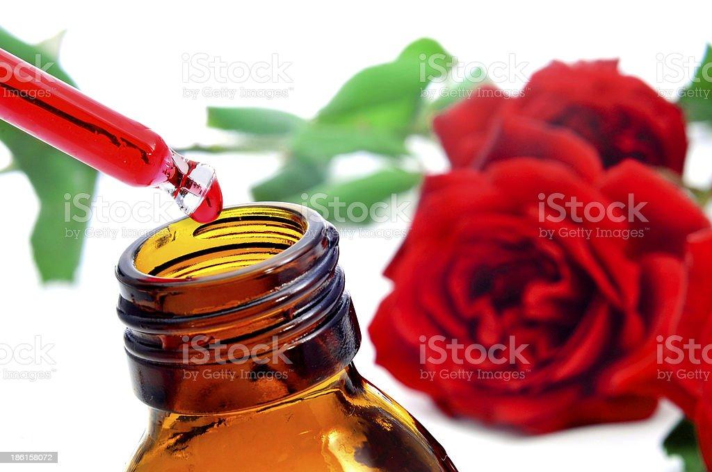 rose essence royalty-free stock photo