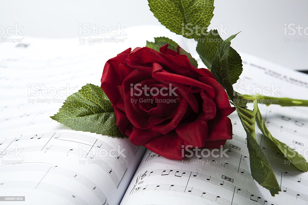 rose flower on note book royalty-free stock photo