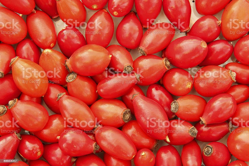 Rose hip background royalty-free stock photo
