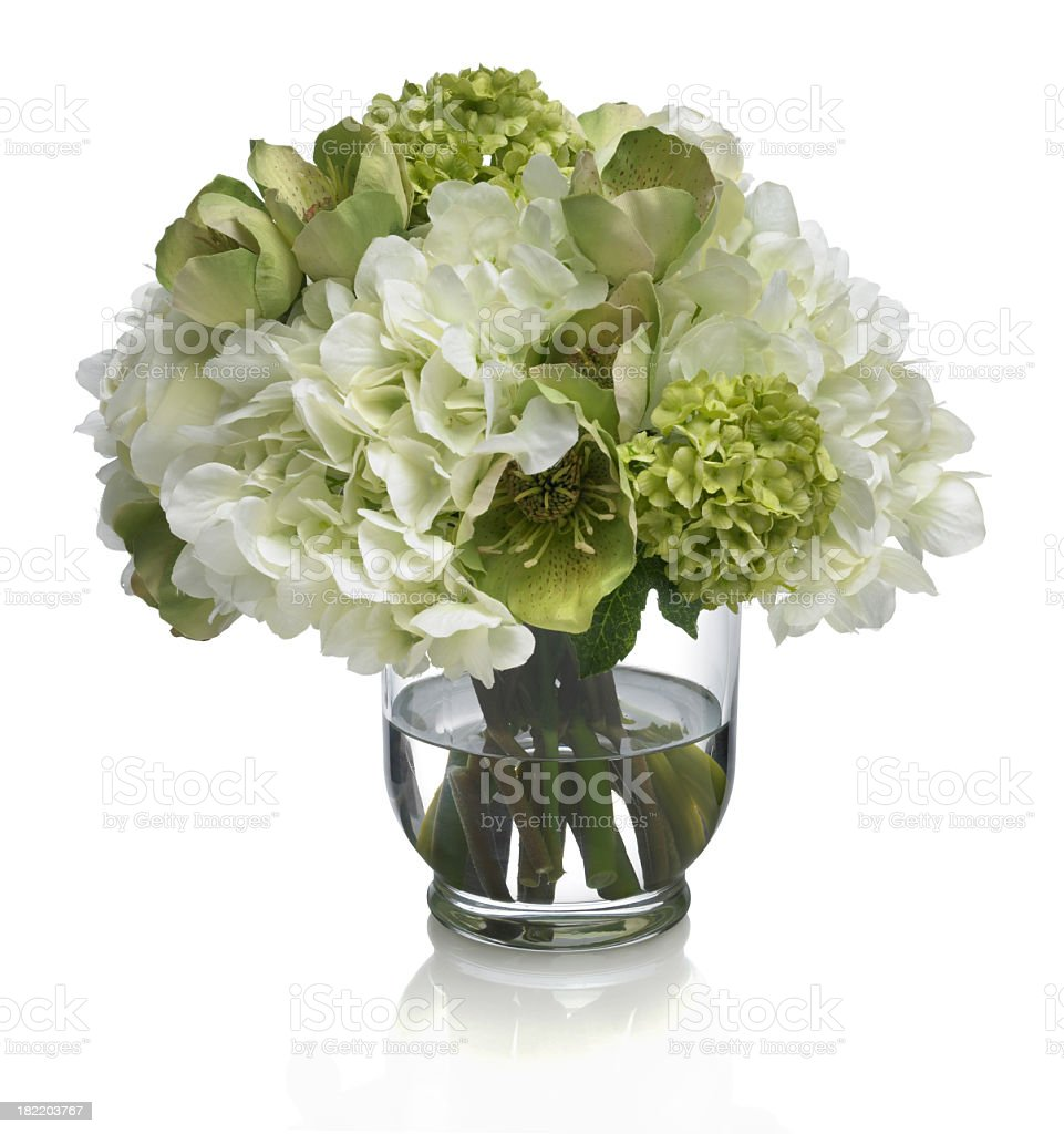 Rose, Hydrangea and Hellebore bouquet on white background stock photo