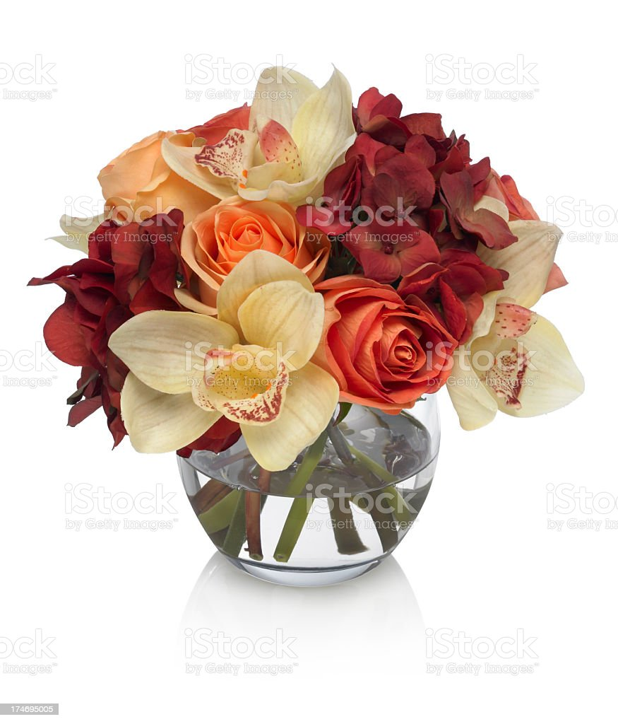Rose, Hydrangea and Orchid Bouquet on white background stock photo