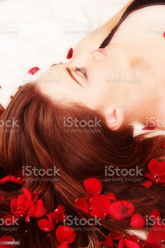 Rose Imagination stock photo