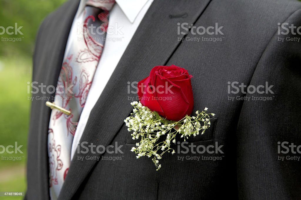 Rose in a buttonhole of the groom close up stock photo