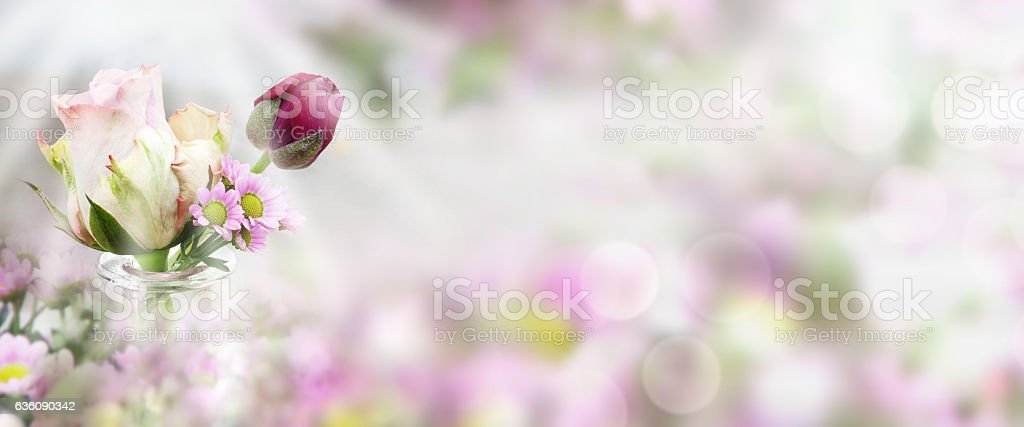 Rose in front of a spring background stock photo