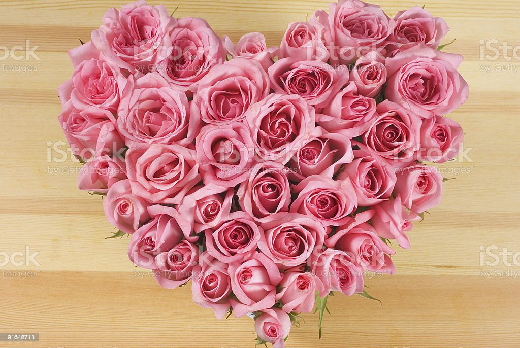 Rose In Love Shape stock photo