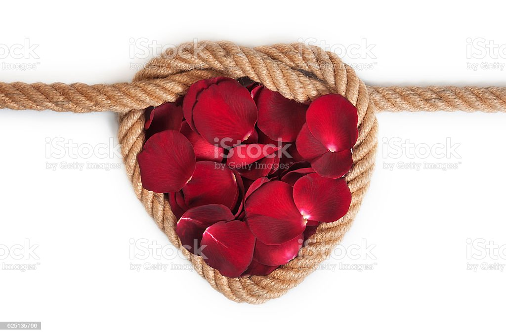 Rose leaves in heart shape rope on isolated stock photo