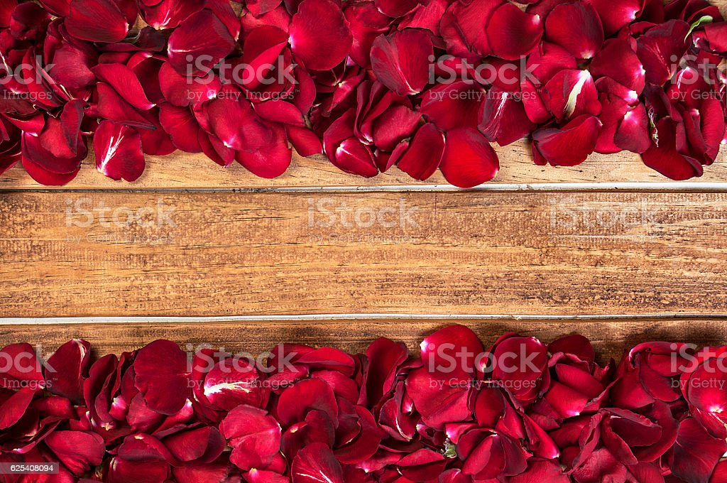 Rose leaves on wooden stock photo