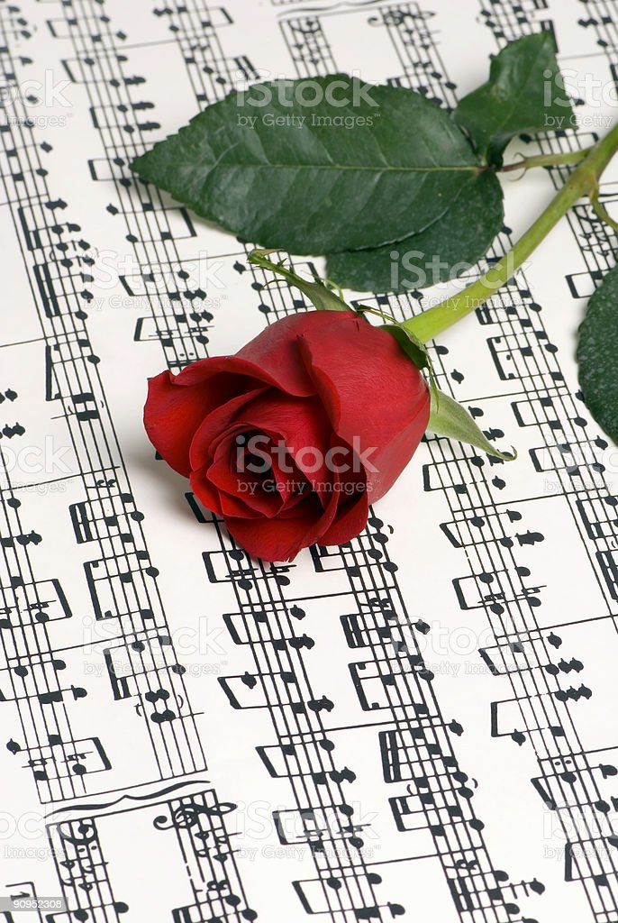 Rose Music 3 royalty-free stock photo
