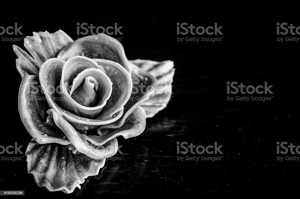 rose on black stock photo