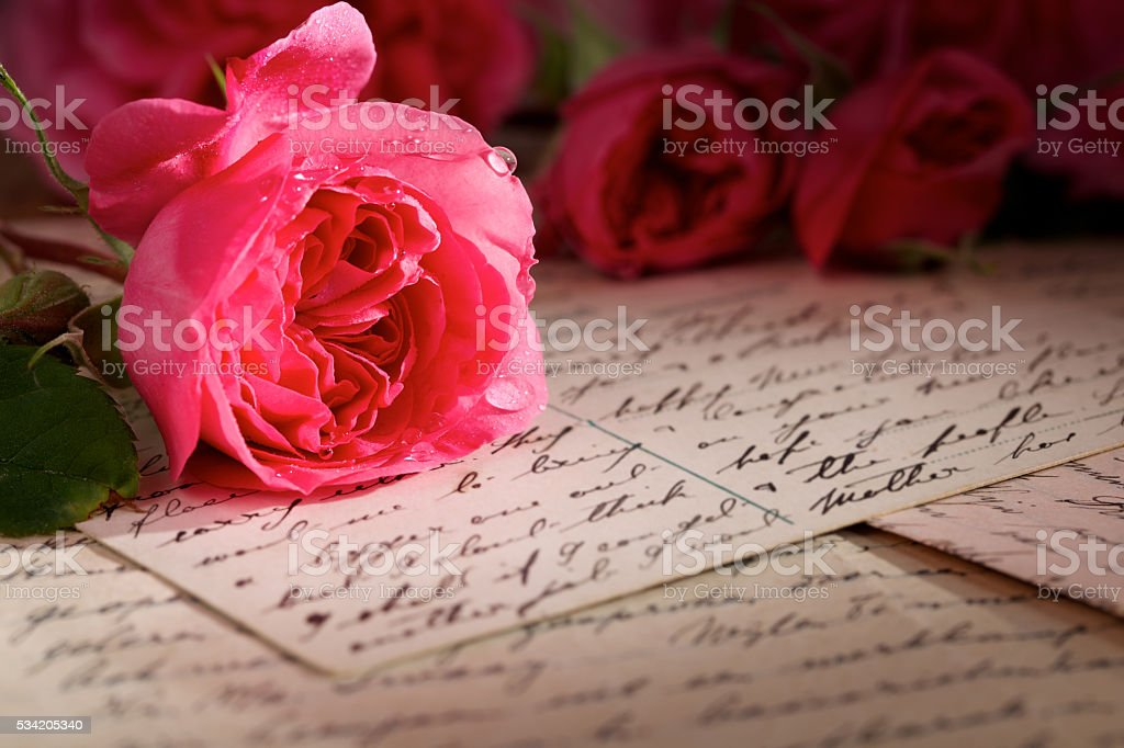 Rose on top of handwritten letters and postcard stock photo