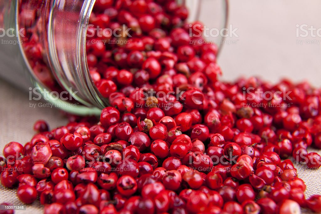 Rose pepper royalty-free stock photo