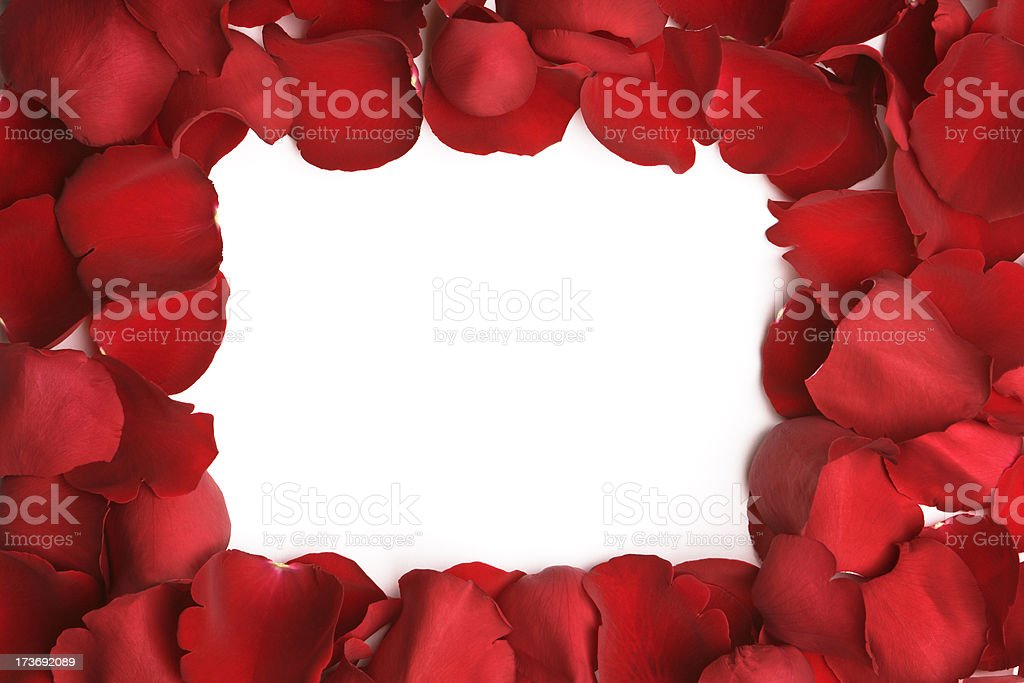 Rose Petal Rectangular Frame stock photo