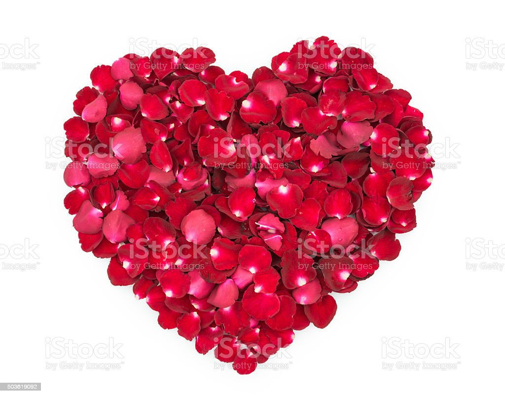 Rose petals in a shape of a heart stock photo