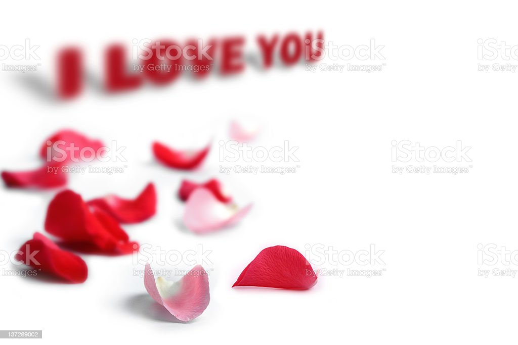 Rose petals with I love you phrase royalty-free stock photo