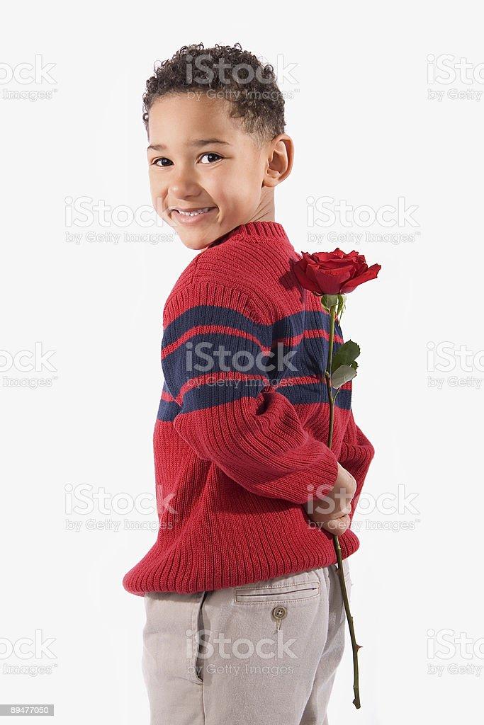 Rose Surprise Smile royalty-free stock photo