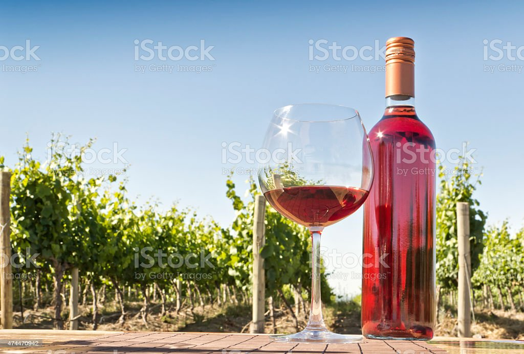 Rose wine and vineyard stock photo