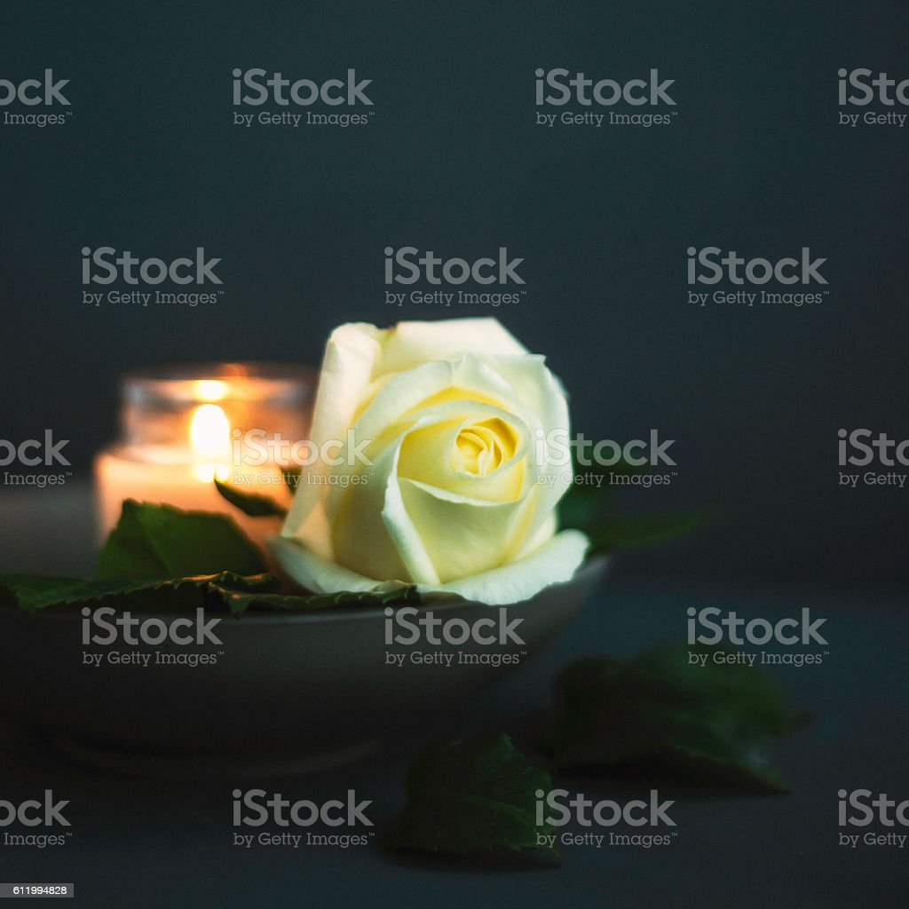 Rose with burning candle in rememberance or for vigil stock photo