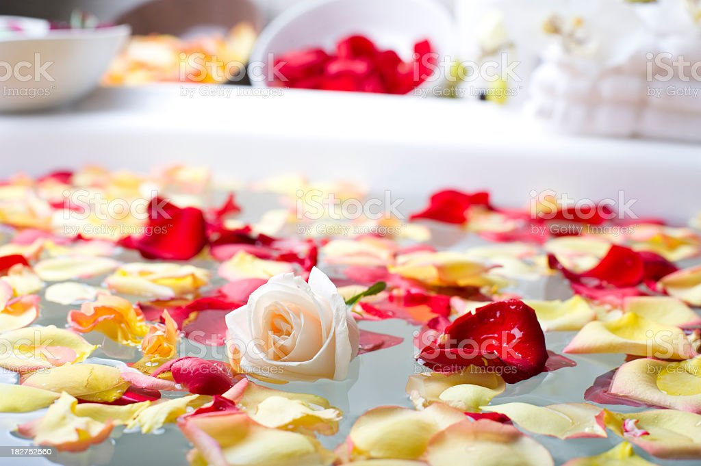 Rose with flower petals in a spa stock photo