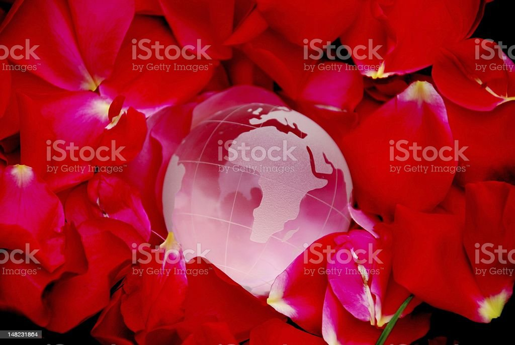 Rose world royalty-free stock photo