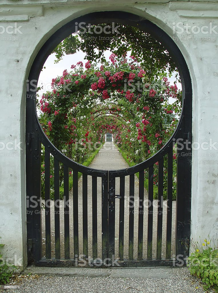 rosegarden royalty-free stock photo